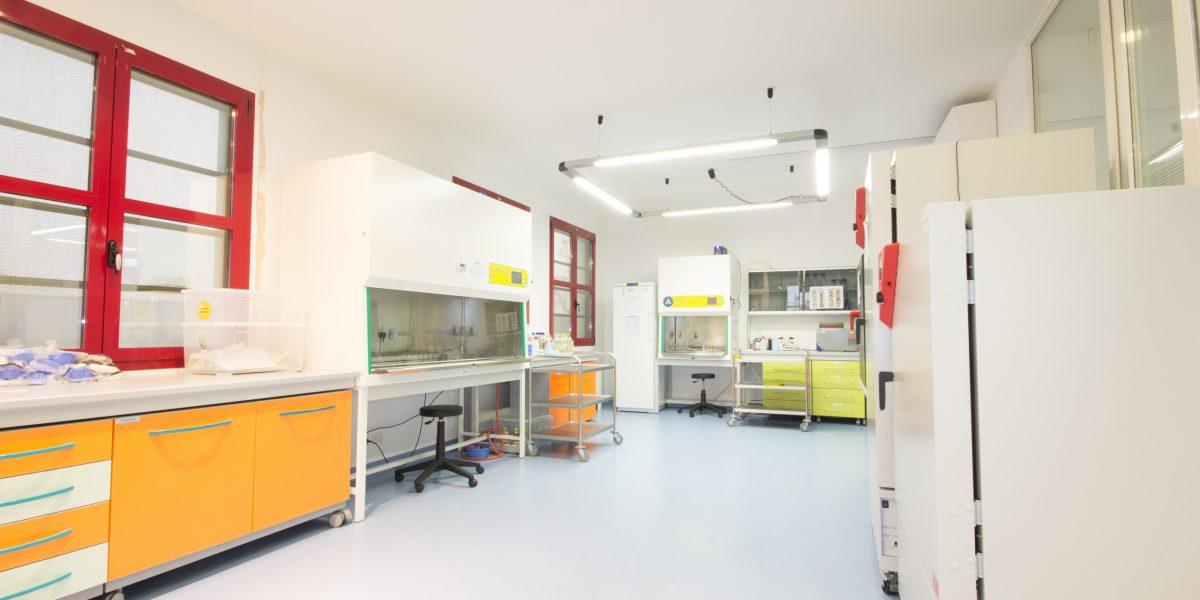 Laboratorio A